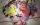 Paris Art Web - Painting - Pinar Du Pre - Snapshots - Linda White I